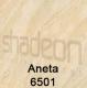 aneta6501
